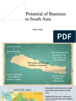 Growth Potential of Business in South Asia.pptx
