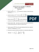 2. Cálculo de determinantes. Regla de Sarrus (Ejercicios)