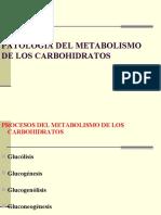 Patologia Del Metabolismo de Los Carbohidratos