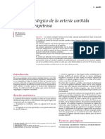 Acceso quirúrgico de la arteria carótida interna intrapetrosa.pdf