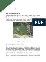 Presas-hidráulicas (1)