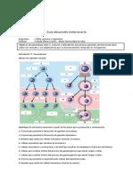 guia desarrollo embrionario 2020.docx