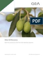 W-RR-2372 Olive Oil Rec Broc