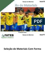 AULAS 10 - Seleção - Com forma.pdf