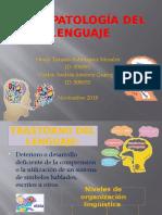 PSICOPATOLOGÍA DEL LENGUAJE (1).pptx