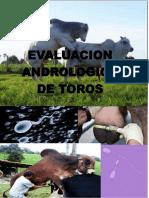 Evaluacion andrologica de toros.pdf