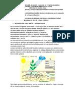 Ciclos Biogequimicos_Taller Lechería