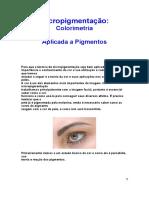 Micropigmentação.docx