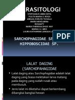 SARCHOPHAGIDAE SP DAN HIPPOBOSCIDAE SP..pptx