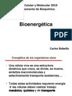 Bioenergetica2019