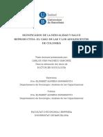 TESIS CARLOS IVAN PACHECO.doc