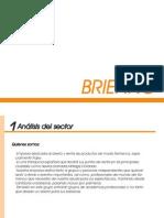 Briefing.anabel de La Higuera1