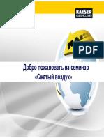 DLS_01_ru