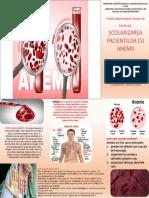 scolarizarea pacientilor cu anemii josan livia