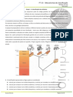 369352565-FT-13-Mecanismos-de-Classificac-a-o.pdf