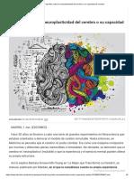 9 apuntes sobre la neuroplasticidad del cerebro o su capacidad de cambiar