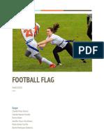 E FOOTBALL FLAG