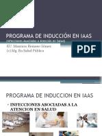 PPT-INDUCCION-IAAS