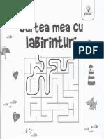 Cartea mea cu labirinturi.pdf