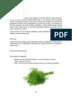 Investigación de plantas medicinales