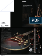 Electric Guitar-Basses Catalog 2009