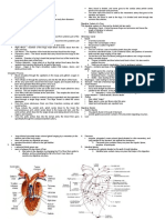 Circulatory and Digestive System