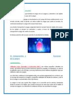 BIOLOGIA 2019.docx