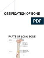 OSSIFICATION OF BONE