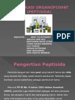 TUGAS CHIKA 7.pptx
