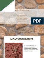 Exposición Montmorillonita.pptx