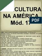 Aula_Agricultura_Minerais_Industria_Canadá_Am.AngloSaxônica_México_Am.Central_Móds17,18,19,20,21,22,23.ppt