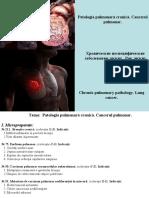 4.-Patologia-pulmonara-cronica.-Cancerul-pulmonar.ppt