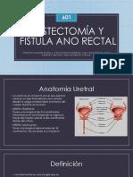 Cistectomía y fistula ano rectal