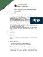 Plan de leccion 5 - Armazones y Marcos