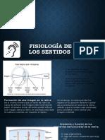 FISIOLOGIA DE LOS SENTIDOS