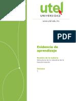 Estructura de la industria de la transformación_C_Semana_2_P (1).docx