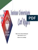 Supervision de Casos I sintesis.docx