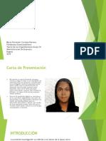 trabajo teoria-convertido (1).pdf