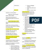 APUNTES_CONCEPCIONES Y PERSPECTIVAS DE LA INFANCIA