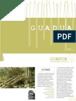 guadua