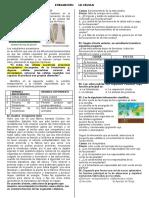 PREGUNTAS LA CÉLULA.docx