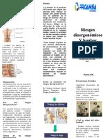 Los Riesgos Disergonómicos - Consecuencias.ppt