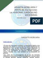 Modulo 5 Ley de Garantias Mobiliarias y Reglamento Psna Jdca no societaria - Modulo 5