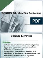 genetica-bacteriana