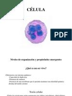 Célula Membrana