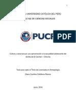 Tesis de licenciatura Diana Cribilleros.pdf