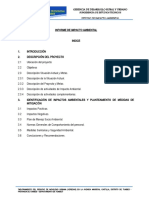informe impacto ambiental
