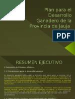 plan para el desarrollo de jauja
