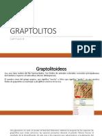 9. GRAPTOLITOS