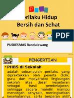 Penyuluhan PHBS Sekolah